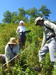 Volunteers and staff sample vegetation along a bluff transect at Openlands Lakeshore Preserve.