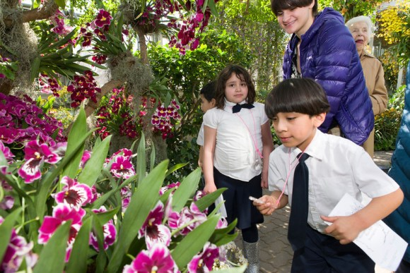 PHOTO: It is easy for students to see how this flashy orchid attracts pollinators as well as people.