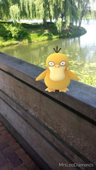 PHOTO: Psyduck Pokémon at the Visitor Center bridge.