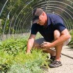 PHOTO: Richard Hawke crouched down by plants, entering data on a smartphone.