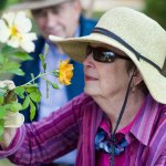 Senior smelling rose (featured)