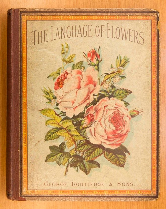PHOTO: The Language of Flowers bookcover.