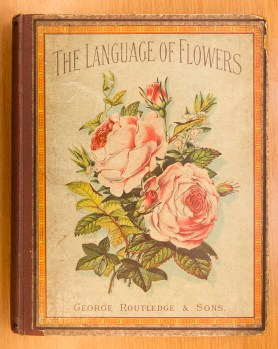 Naturally, books on the subject often had lavishly decorated or illustrated covers.