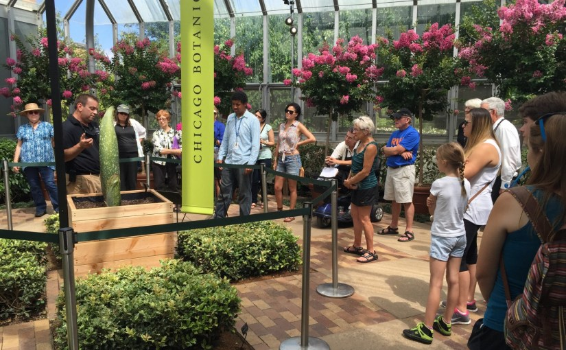 PHOTO: Outdoor floriculturist Tim Pollak talks titan arum with Garden visitors.