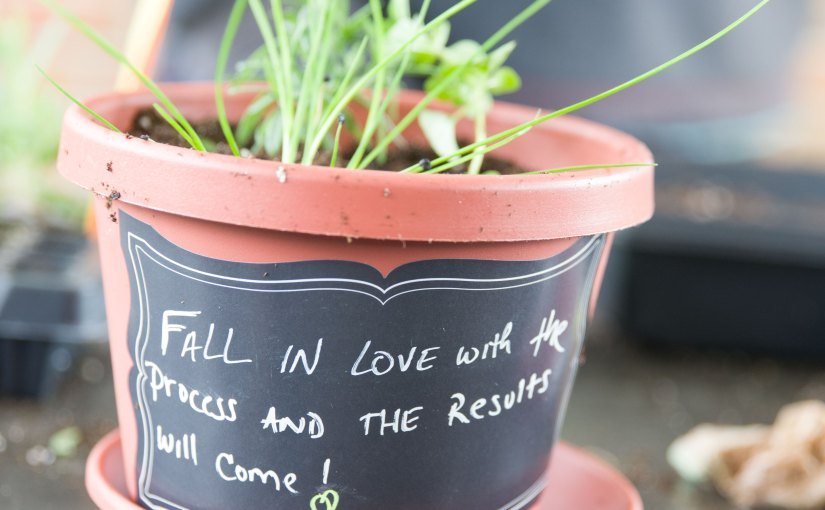 "PHOTO: Pot labeled with chalkboard paint reads, ""Fall in love with the process and the results will come."""