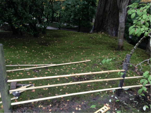 PHOTO: Building yotsume-gaki (tea garden fence).