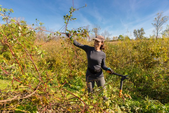 PHOTO: Amy Spungen out in the field, volunteering for Plants of Concern.