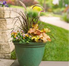 PHOTO: A fall container with grass, pansies, and heuchera, which comes in a host of leaf colors.