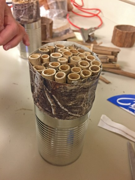 Step 1: placing the reeds. They will stick out of the can quite a bit, so you can extend the lip of the can with duct tape around the reed bundle.