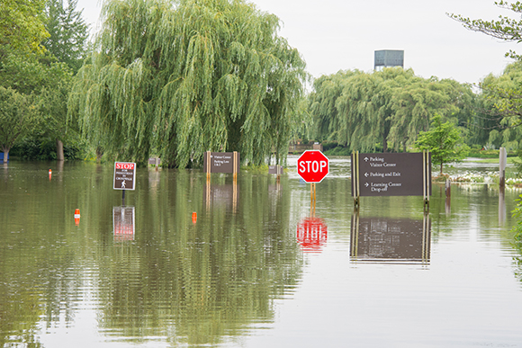 Flooding at the visitor entrance's main intersection