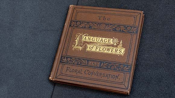 One of the smaller volumes of The Language of Flowers