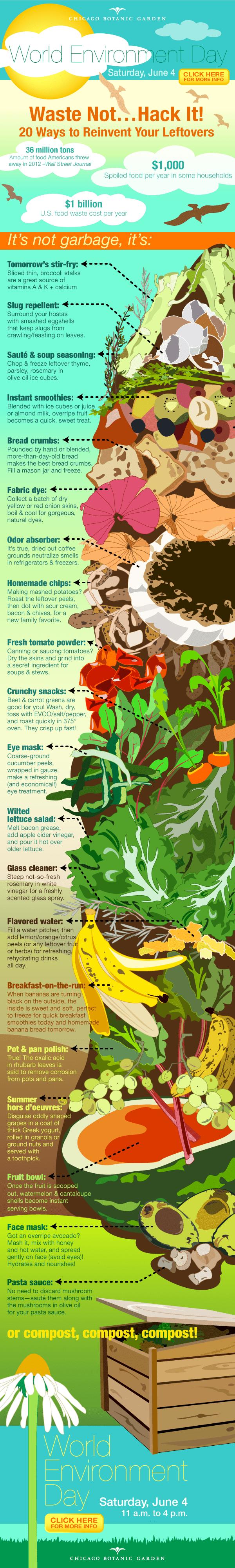 ILLUSTRATION: Food waste infographic.
