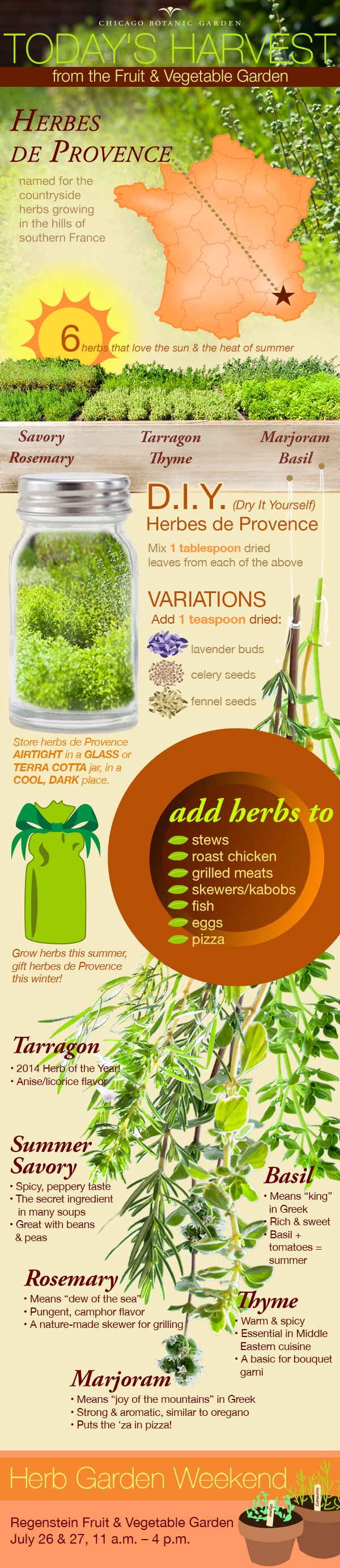 Vegetable garden graphic - An Infographic On Cultivating The Herbs Of Herbs De Provence
