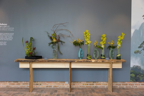 ikebana-orchid-show