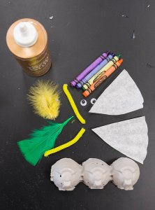 PHOTO: egg carton, crayons, googly eyes, coffee filters, feathers, pipe cleaners and glue.