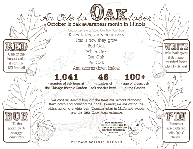 Oaktober infographic to color