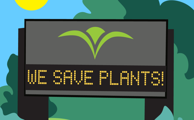 The Link Between Plants and Animals
