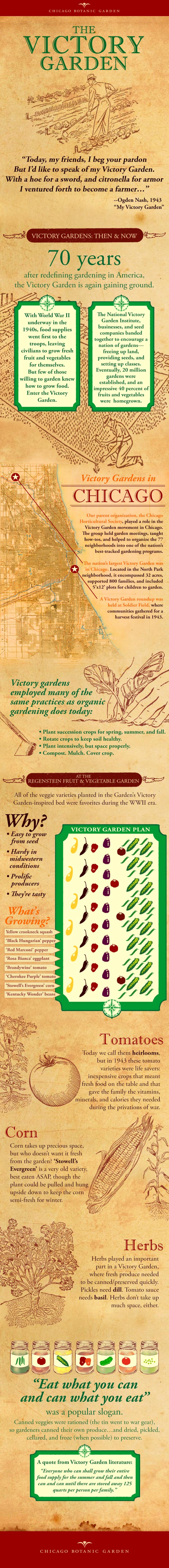 An infographic about Victory Gardens