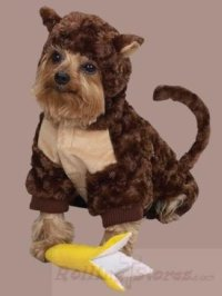 HALLOWEEN DOG PET COSTUME MONKEY& BANANA TOY LG HOLIDAY | eBay
