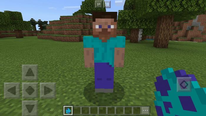 Steve Add On Minecraft Pe Mods Addons