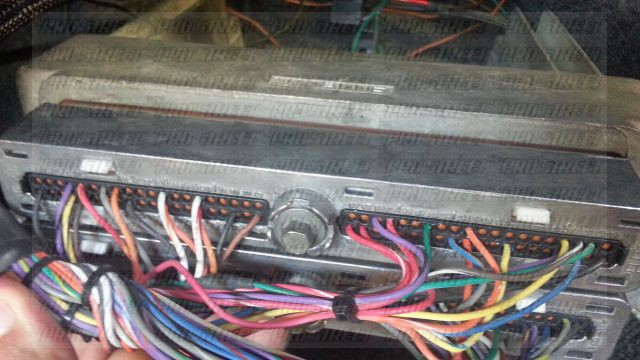 Ls1 Wiring Harness And Computer Ls1 Wiring Harness And Computer