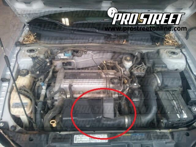 Pro Circuit Throttle Position Sensor Guard
