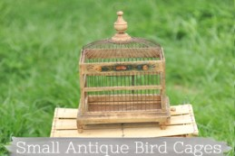smallantiquebirdcages