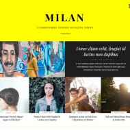 Milan Pro child theme