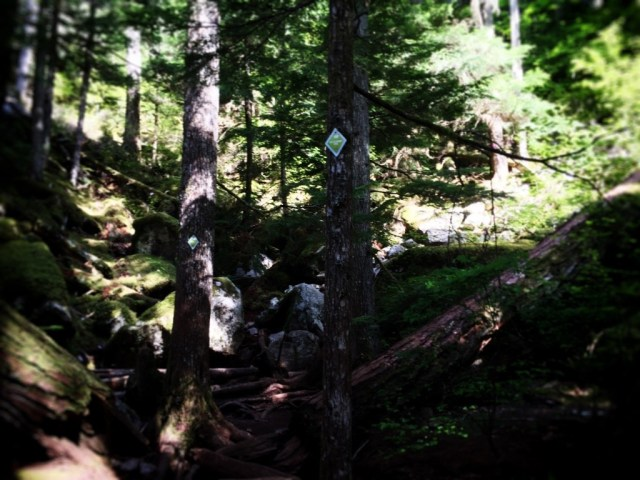 20150509_hike14