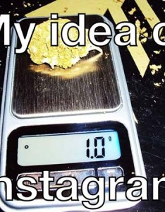 Weed measurements meme also  complete guide my tours rh my tours