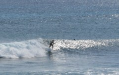 Garbanzos_Surf_11-24-13_09