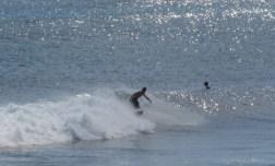 Garbanzos_Surf_11-24-13_10