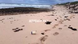 El Faro Debris Washing up on Abaco Bahama Beaches