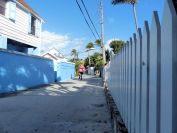 Turtle_Trot_Hopetown_Abaco_2015_20151126_0355