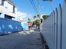Turtle Trot Hopetown Abaco 2015 20151126 0356