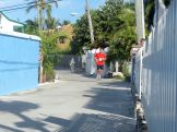 Turtle_Trot_Hopetown_Abaco_2015_20151126_0397