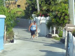 Turtle_Trot_Hopetown_Abaco_2015_20151126_0427