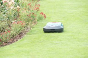 Robotic mowers keep the grass immaculate.