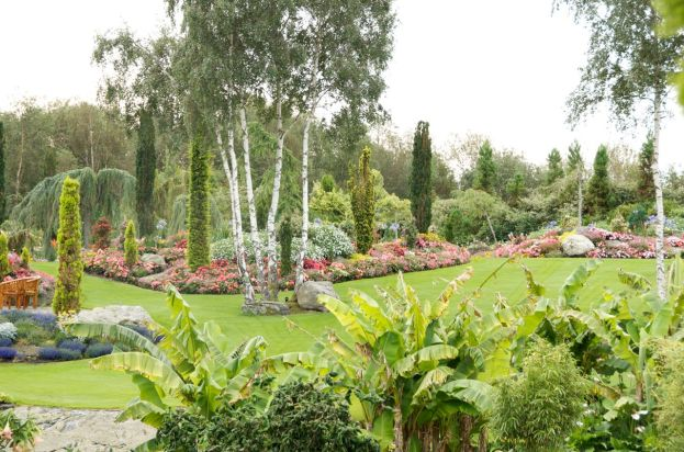 Grass areas are used throughout the garden