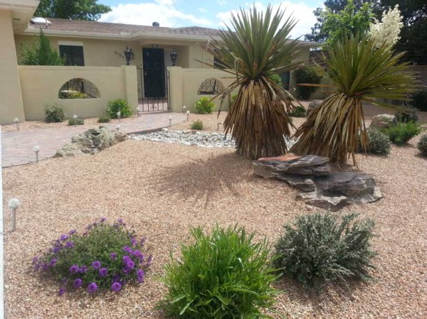 abq landscaping - services