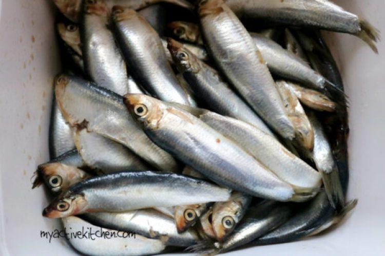 yoyo fish recipe