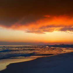 Florida rehab, top rehab centers in Florida