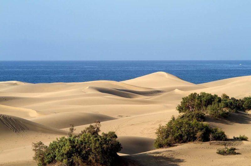best Canary island