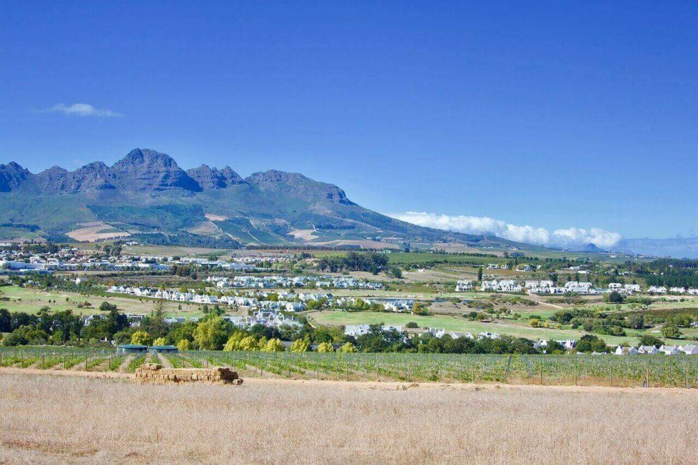 Five Amazing Estates To Do Wine Tasting In Stellenbosch