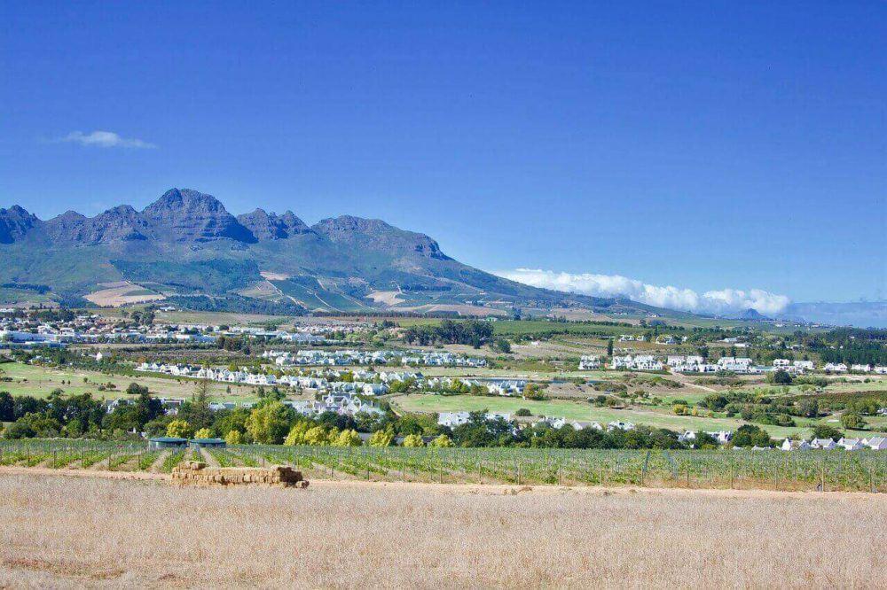 Five Amazing Estates To Do Wine Tasting In Stellenbosch