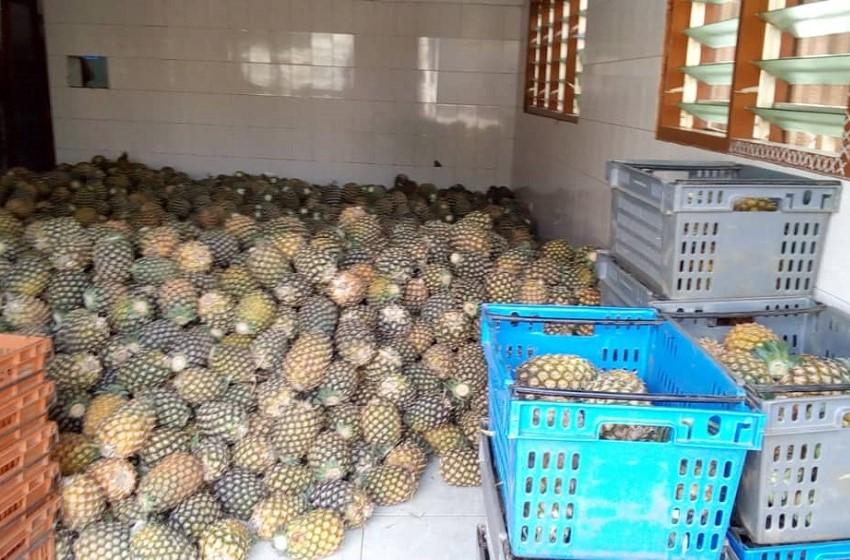 "Togo/ ""Agro Services"" promeut les produits agro-alimentaires"
