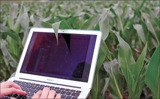 Safe and Sound: Standardizing Ag Data Privacy and Security