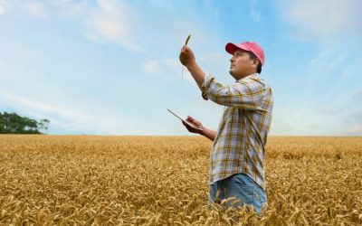 3 Ways Automated Data Collection Benefits Farmers