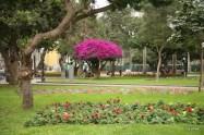 Parque Kennedy / Parque Central