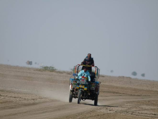 Dasada- Little rann of kutchh